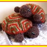 Tweeling Schildpadden