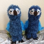 twinbears papegaai
