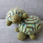 twinbears schildpad